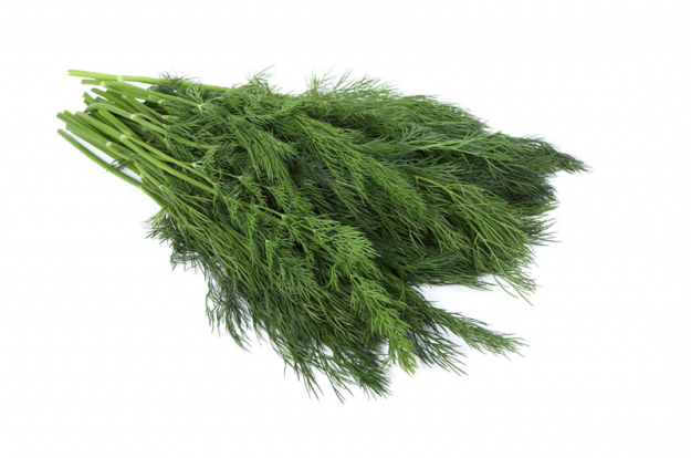 Is dill popular in your country? Do you use it often?
