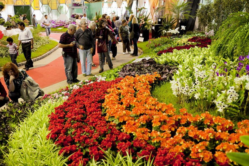 Fiesta de la flor, Argentine