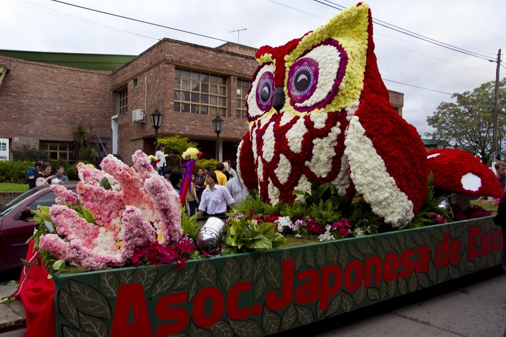 National Flower Festival Argentine