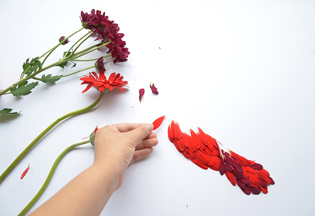 Birds Made of Flower Petals and Leaves