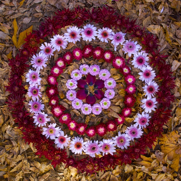 Autumn Mandala