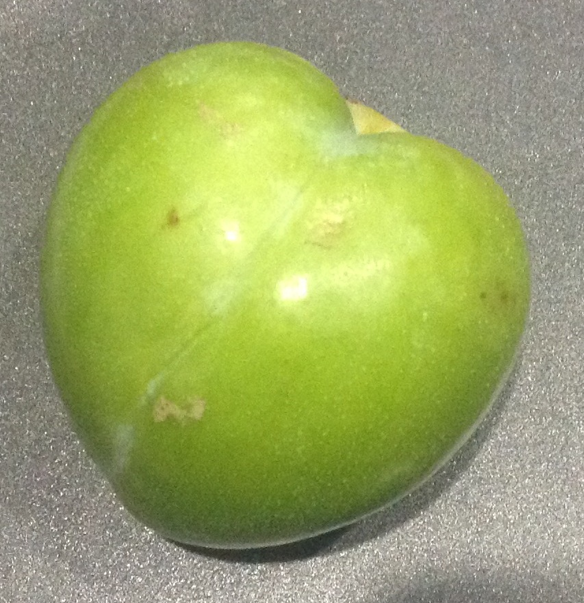 Help me identify this fruit