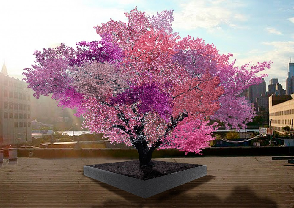 The Tree Of 40 Different Fruits