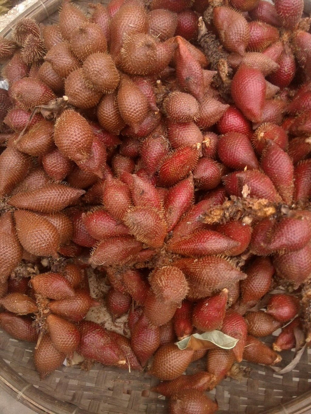 What's this exotic fruit, found in Cambodia?
