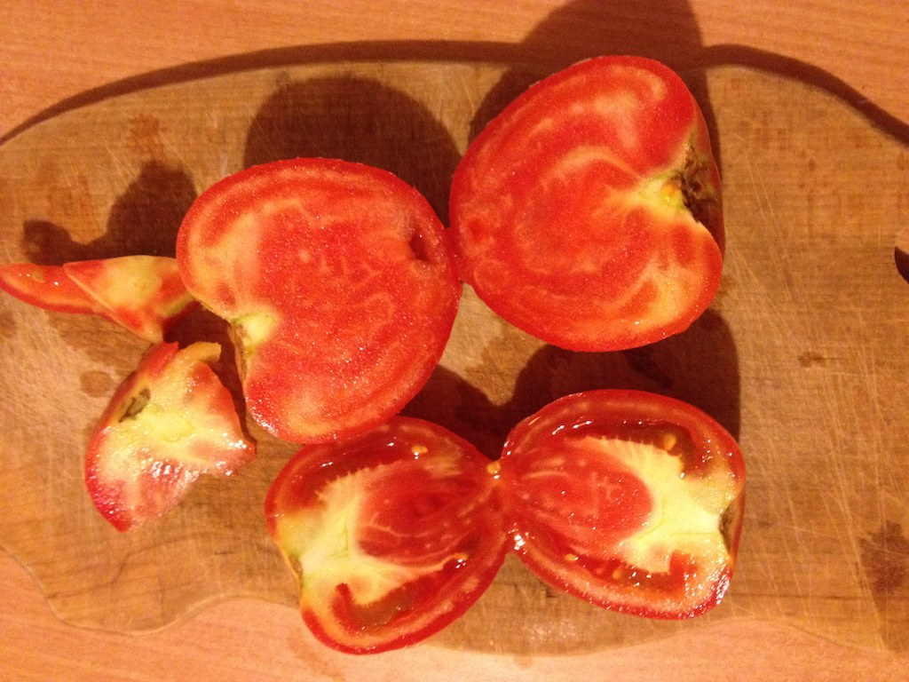 Tomatoes with large hard white cores and white hard veins