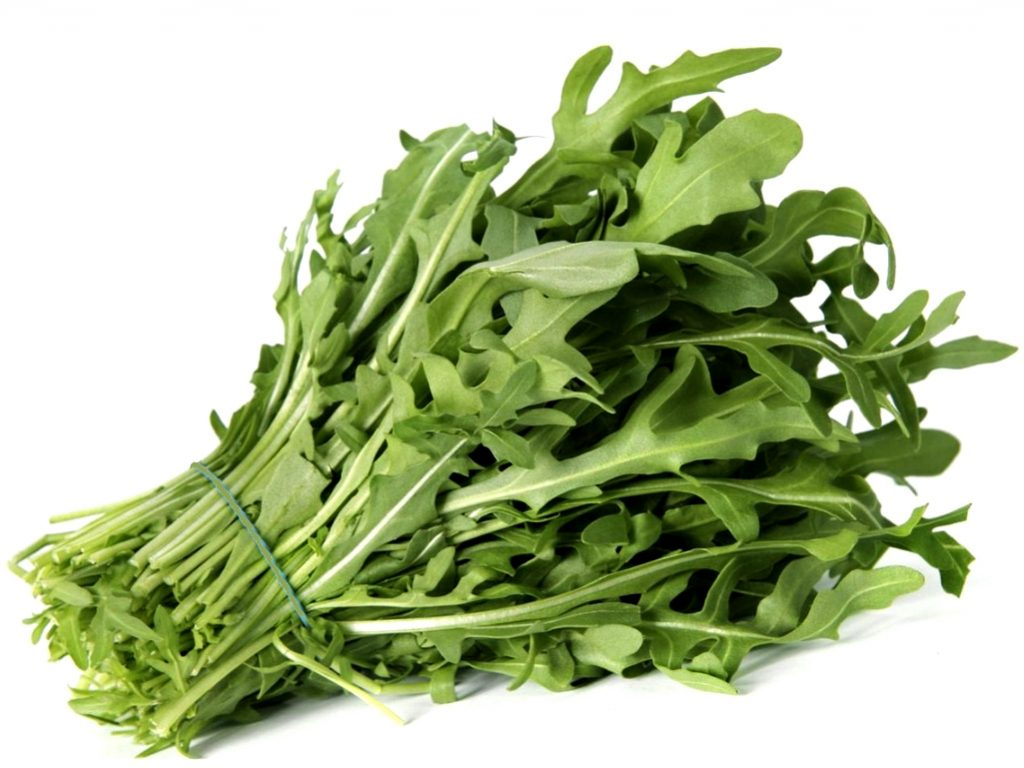 Salad Rocket or Rucola (Roquette, Arugula)