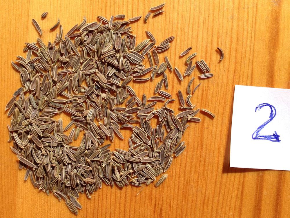 Black cumin, black jeera seeds