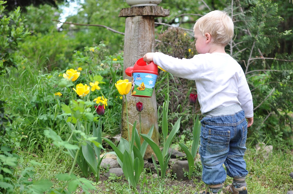 Cool Gardening Projects To Do With Kids