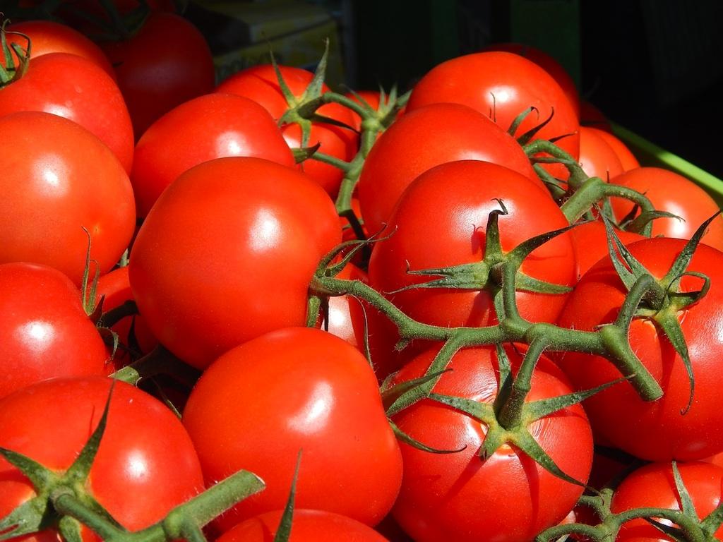 Gardening Tricks: How You Can Use Epsom Salt In Your Garden